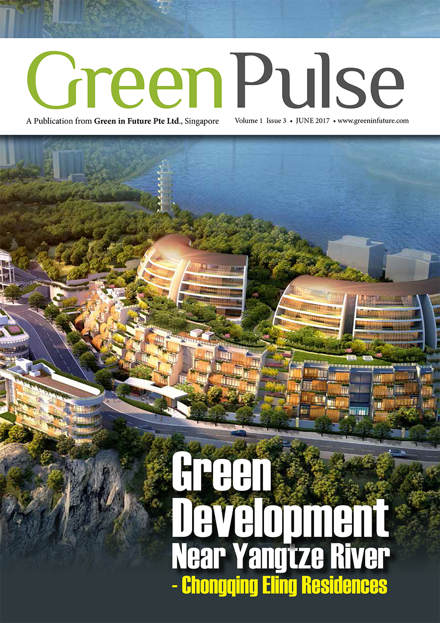 Issue 3 Jun 2017  Green Pulse