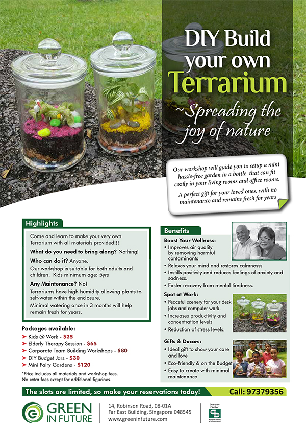 diy terrarium workshops