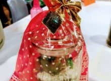 gift wrapped terrarium